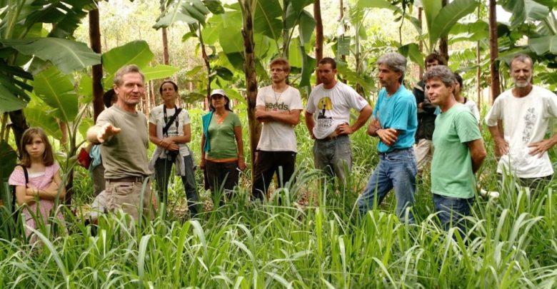 nông nghiệp sinh thái