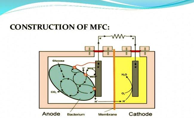 nguyên lý hoạt động pin mfc