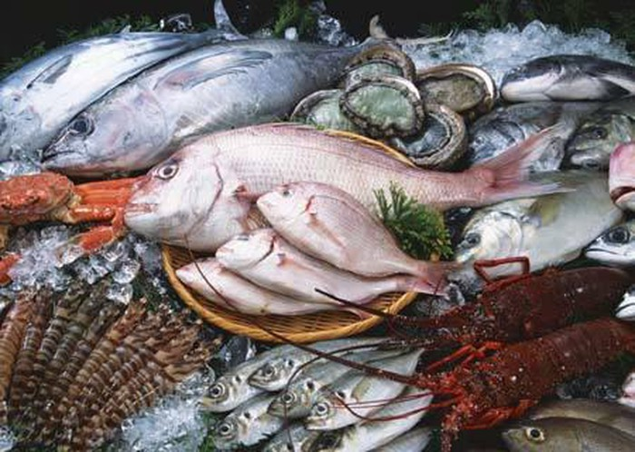 hóa chất tẩm cá