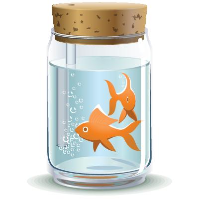cá nuôi trong aquaponic