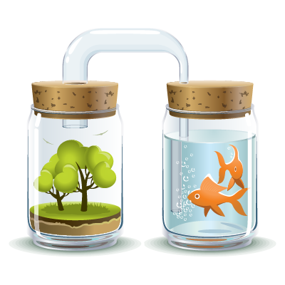 hoạt động hệ thống aquaponic