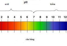 dãi đo độ PH